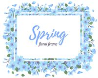 Tender Floral summer or spring frame template Royalty Free Stock Photography