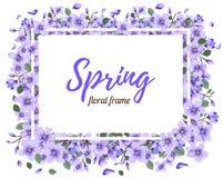 Tender Floral summer or spring frame template Stock Images