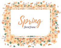 Tender Floral summer or spring frame template Royalty Free Stock Photo