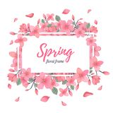 Tender Floral summer or spring frame template Royalty Free Stock Photos