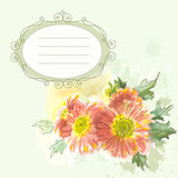Tender flowers  background Stock Photography