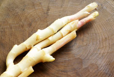 Tender ginger with wood Royalty Free Stock Photo