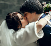 A tender kiss of beautiful newlyweds.  Stock Photography