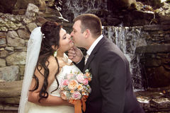 Tender kissing of newlyweds Royalty Free Stock Photography