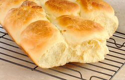 Dinner rolls cooling on rack Stock Photography