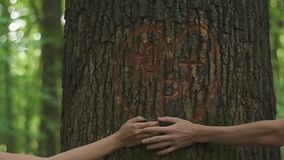 Tender moment of love. Close-up of holding hands of young loving couple on a background of a heart carved on a tree in. Green spring forest stock video footage