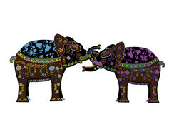 Tender passion. Elephants ethnic style love each other on a white background Stock Images