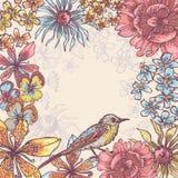 Tender pastel tones botanical frame Stock Photos
