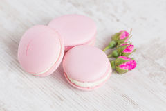 Tender pink macaroons on white wood background Royalty Free Stock Photography