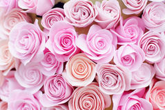 Tender pink rose background Stock Image