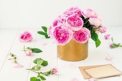 Tender pink tea roses bouquet in vintage pot, blank of greeting card and craft paper envelope on white wooden background. Postcard. Mock up. Summer, spring royalty free stock photo