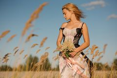 Tender portrait of a blonde girl in a lingerie on the field. Tender portrait of a blonde girl in a lingerie standing on the beautiful field with flowers Stock Image