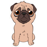 Tender puppy. A tender puppy with sad face Royalty Free Illustration