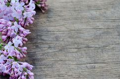 Tender purple lilac flowers on natural wooden background. Tender purple lilac flowers on natural wooden table background royalty free stock photography