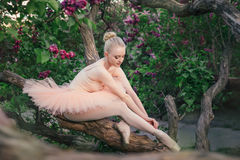 Tender and romantic ballerina relaxing in flowers garden stock photo
