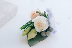 Tender rose and blue flower put in a boutonniere. Closeup Royalty Free Stock Photos