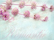 Tender shabby chic romantic postcard with wild flowers and text. stock photos