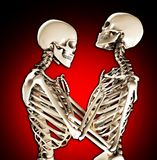 Tender Skeletons Royalty Free Stock Image