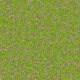 Tender Spring Grass. Seamless TileableTexture. Stock Photography