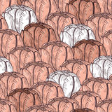 Tender tulip seamless pattern. Vector flower background Stock Photos