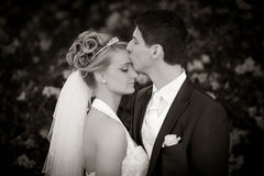 Tender wedding kiss. Young couple just married. groom kiss his pretty bride after the wedding ceremony. she is blond and wearing a nice diadem. classic black and Royalty Free Stock Photo