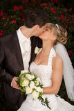 Tender wedding kiss red roses royalty free stock image