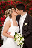 Tender wedding kiss red roses Stock Image