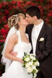Tender wedding kiss red roses stock image