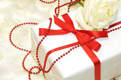 Tender white rose with gift box Stock Photography
