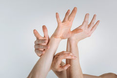 Tender women hands expressing grace in the studio. Hands theater. Flexile gracious sophisticated women hands locating in the white colored studio and being royalty free stock photo