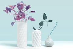 Tendera den ultravioletta färgväxten i vas Modellbild med dekorativa växter i modernt vitt keramiskt vasanseende på den gråa arkivfoto