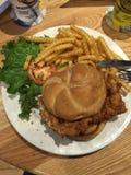 Tenderloin χοιρινού κρέατος με τα τηγανητά Στοκ φωτογραφίες με δικαίωμα ελεύθερης χρήσης