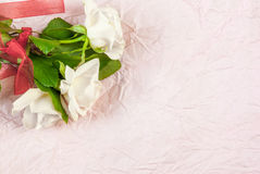 Tenderly pink rose Royalty Free Stock Image