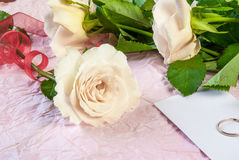 Tenderly pink rose Stock Images