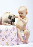 Tenderness Royalty Free Stock Photos