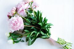Tenderness bouquet of pink and white peonies Royalty Free Stock Images