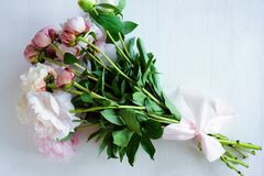 Tenderness bouquet of pink and white peonies Royalty Free Stock Photos