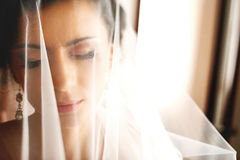 The tenderness bride Stock Photo
