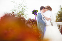 Tenderness of a couple Stock Photos