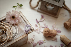 Tenderness morning Stock Images