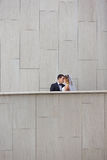 Tenderness wedding couple Royalty Free Stock Photography