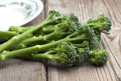 Tenderstem Broccoli Stock Photo