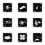 Tending garden icons set, grunge style Stock Image