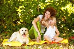 Tendo o divertimento com o cão na natureza Foto de Stock Royalty Free
