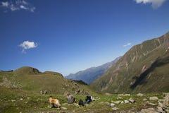 Tendo um descanso em uma excursão de caminhada Fotografia de Stock Royalty Free