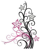 Tendril, abstract, flowers. Abstract tendril with blossoms, black and pink Stock Photos