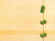 Tendril on bamboo wooden background Royalty Free Stock Images
