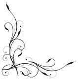 Tendril, czerń, elegancki Zdjęcie Royalty Free
