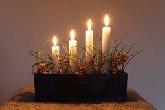 Tenedor del palillo de Advent Candle con cuatro velas Imagen de archivo