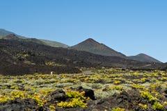 Teneguia volcan waaier, het eiland van La Palma Royalty-vrije Stock Afbeelding